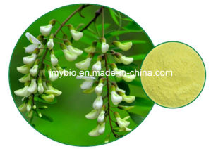 Hot Sale 100% Natural Sophora Japonica Extract Powder 99% Cytisine pictures & photos