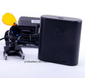 Portable LED Surgical Head Light pictures & photos
