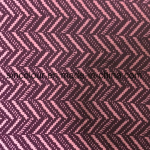 80%Polyamide 20%Spandex Aop Fabric for Swimwear pictures & photos