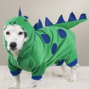 Pet Product Supply Accessory Costumes Dinosaur Cat Dog Pet Clothes pictures & photos