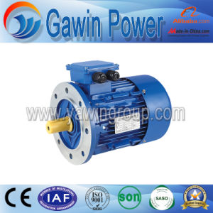3-Phase Asynchronous Cast Iron Housing Induction Motor - Ie3 Standard pictures & photos
