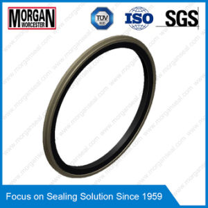 Omk-E/PS/Og Series NBR/FKM/PTFE Hydraulic Piston Seal pictures & photos