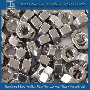 Stainless Steel 304 DIN 934 Small Hex Nut pictures & photos