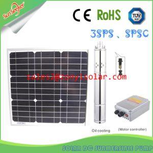 Solar Screw DC Pump with Metal Controller Box (140m -160m) pictures & photos