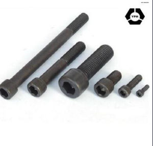 DIN912 Hex Socket Head Cap Bolt with Stainless Steel pictures & photos