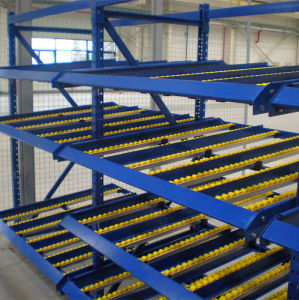 Carton Flow Gravity Racking for Fifo pictures & photos
