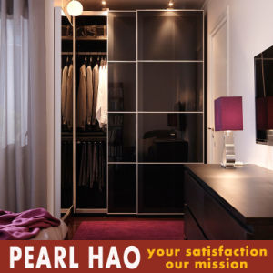 professional Design Lacquer Board Sliding Door Wardrobe pictures & photos