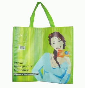 Non Woven Bag (XT-B027) pictures & photos