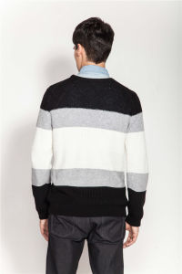 Winter Crew Neck Structured Knit Men Sweater pictures & photos