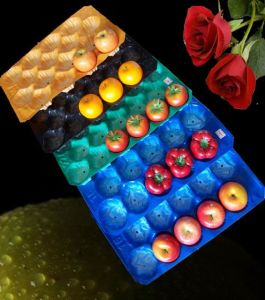 39X59cm/29X49cm Different Counts FDA Approval Fruit&Prodcuce Fruit Tray Liner pictures & photos