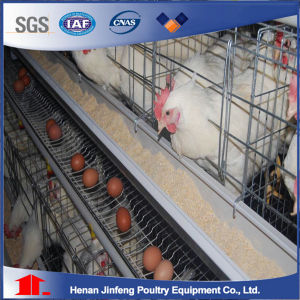 Jinfeng Design Poultry Equipment Chicken Cage Livestock/Fowl Cage for Sale Agriculatural Machine pictures & photos