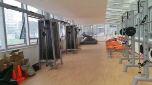 Ce Certificated Fitness Machine / Glute Machine (SL48) pictures & photos