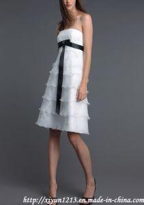 New Short Embroidered Wedding Derss/Bridal Dress (angela-173)