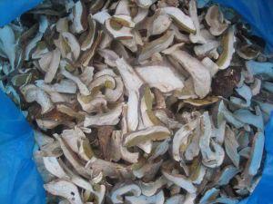 Dry Boletus Edulis (02)