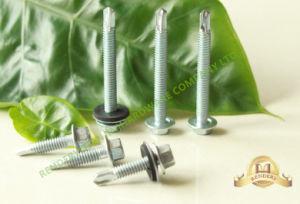 DIN7504 Hexagonal Head Machine Thread White Galvanized EPDM Washer Self Drilling Screw pictures & photos