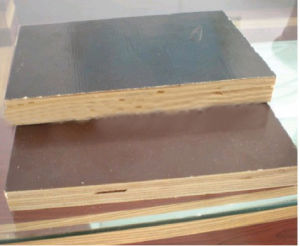 Film Faced Plywood (BL0325)
