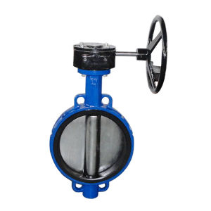 Cast Iron Wafer Type Butterfly Valves pictures & photos
