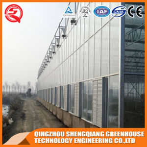 Agriculture Glass Greenhouse for Vegetables/Flowers/Garden pictures & photos