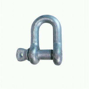 Commercial Grade Screw Pin Shackle pictures & photos