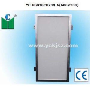 28W LED Panel Light (YC-PB028CH288-A(600× 300))