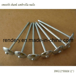Galvanized Roofing Nail Umbrella Head Roofing Nail with Spiral Shank Umbrella Nails Building Nails pictures & photos
