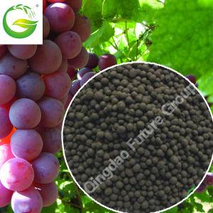 70% Humic Acid Granular Organic Fertilizer pictures & photos