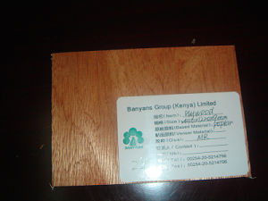 Plywood High Quality Plywood Best Price Plywood