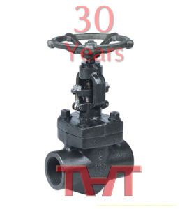 Forged Steel Welding Globe Valve pictures & photos