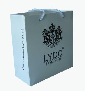 Guangzhou High Quality Branded Retail Paper Bag (YY-B005) pictures & photos