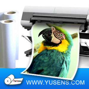 Cast Coated Matte Inkjet Paper Roll 128GSM pictures & photos