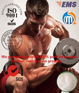 Quality Guaranteed Raw Powder and Injectable 250mg/Ml Enanject 250 Testosterone Enanthate pictures & photos