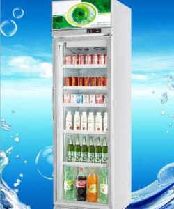 Luxurious Single Door Beverage Display Cooler