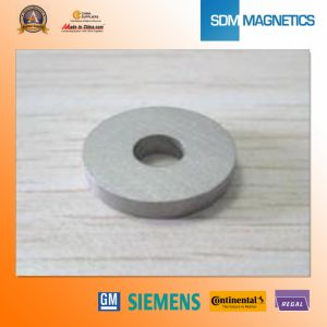 14 Years Experience ISO/Ts16949 Certificated SmCo Magnets pictures & photos