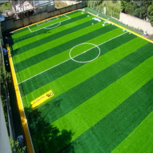 Green Color Artificial Grass for Soccer pictures & photos