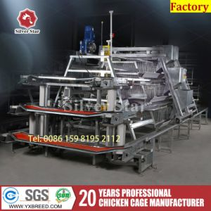 Poultry Farm Automatic Chicken Layer Cage with Feeder pictures & photos