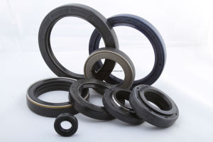 High Speed Oil Seal Oil Proof Rubber Seals High Pressure Oil Seal pictures & photos