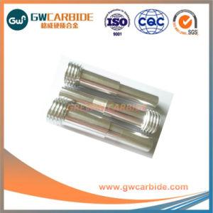 Clad Boron Carbide Nozzle with NPT Thread pictures & photos