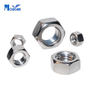 Stainless Steel 304 and 316 DIN934 Hex Nuts