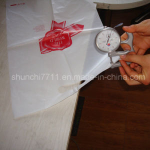 Plastic Pouching Shopping Bag Printing pictures & photos