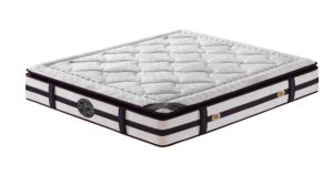 Bonnell Spring Coil Spring Compressed Bed Mattress pictures & photos