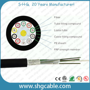2-144 Fibers Outdoor Fiber Optic Cable GYFTY pictures & photos