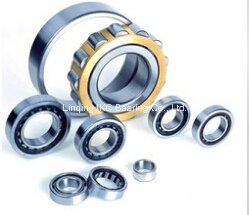 Cylindrical Roller Bearing N224, Nu224, Nj224, N324, Nu324, Nj324, Nu2224, Nj2224, Nu2324, Nj2324, Nn3024 pictures & photos