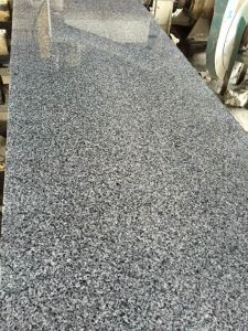 Top Quality Edison Black Granite Material for Tile and Slab pictures & photos