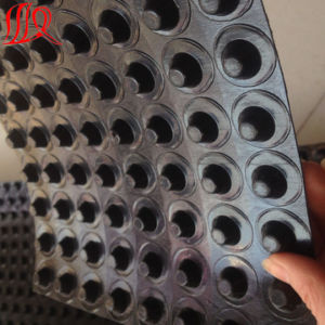 1.0mm Dimple HDPE Waterproofing Board for Drainage pictures & photos