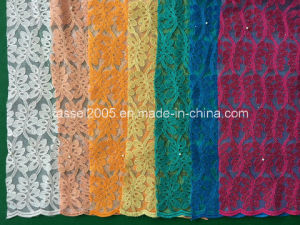 Latest Net Lace with Double Net pictures & photos