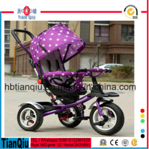 Baby Stroller Bike Umbrella Stroller pictures & photos