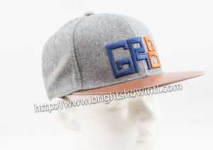 Fashion Custom Logo 3D Embroidery Flat Hiphop Snapback Baseball Cap pictures & photos