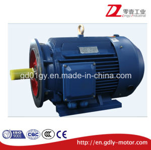 Y2 Series Cast Iron 3 Phase Asynchronous Electromotor pictures & photos