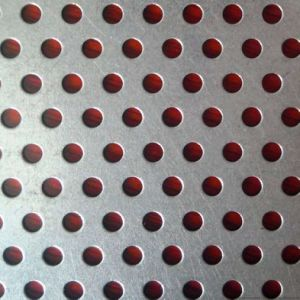 Round Hole Stainless Steel Perforated Metal Mesh Panel Sheet pictures & photos