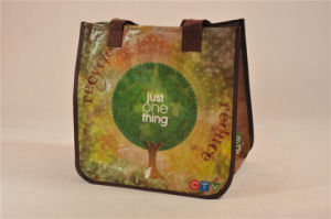 BSCI Audit Factory China Bag/Non Woven Felt/Non Woven Bag (MECO399) pictures & photos